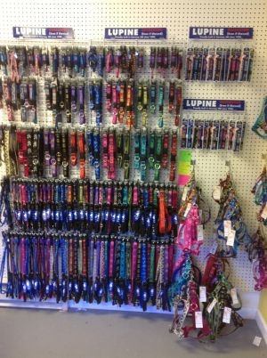 Lupine leashes and collars are guaranteed for life, even if chewed! They come from North Conway NH. They are very durable and come in many colors and sizes.